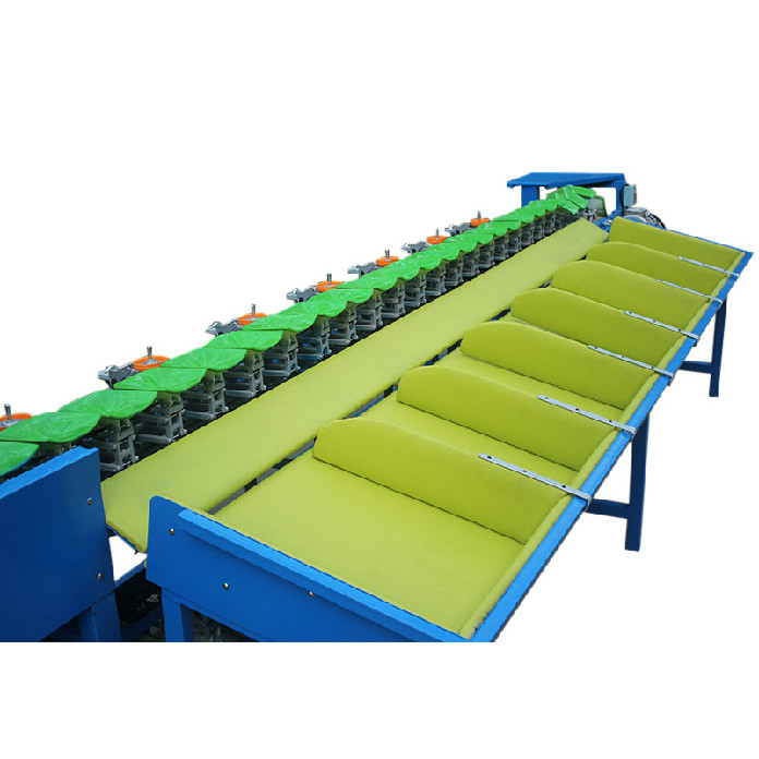 passion fruit dragon fruit weight sorting machine for sale