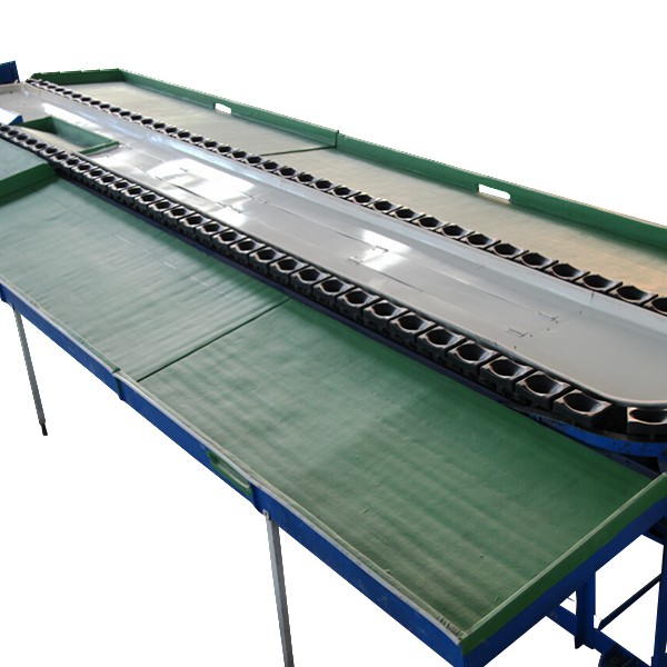 automatic vegetable fruit weight sorting machine with conveyor (TPP-DZ180)