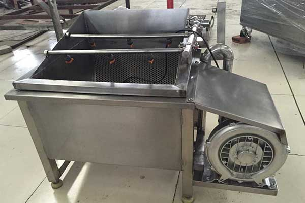 Small Fruit and Vegetable Washing Machine