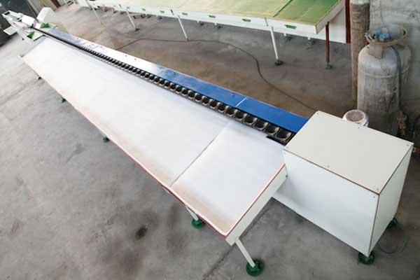 Electronic Weigher Fruit Sorting Machine(TPP-DZ180)