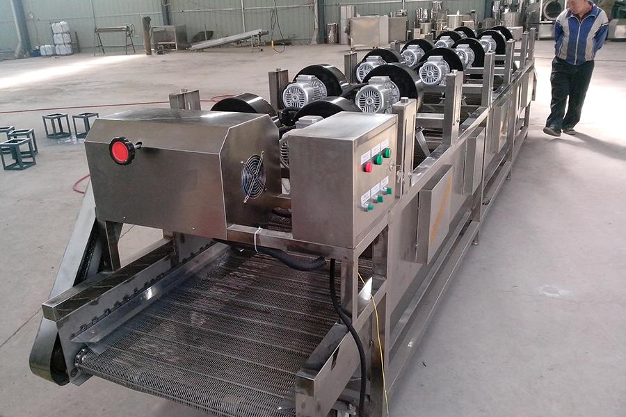 Potato Chips Production Line(300kg/h)